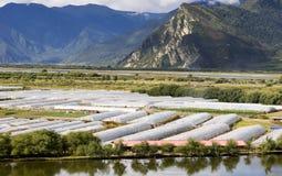 Farm tent in mountain area Stock Image