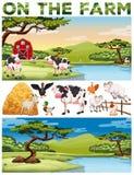 Farm theme with farm animals and farmland Stock Photo