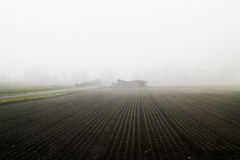A farm in the thick fog with symmetrical plants in the foregroun. Symmetrical lines made out of plants pointing to a little farmhouse Royalty Free Stock Image
