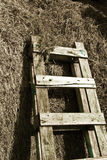 Farm time (vintage). An old wooden ladder leans against some hay Stock Photography