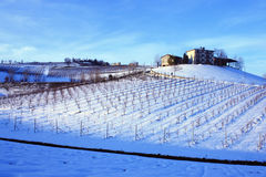 Farm on the top of the wineyard. Wineyard of Lambruso wine and farm in Castelvetro, Italy, under the snow royalty free stock image