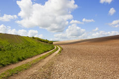 Farm track and chalky soil Stock Images