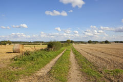 Farm track at harvest time Royalty Free Stock Photos