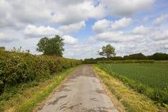 Farm track and hawthorn hedgerows. A small farm road with hawthorn hedgerows wildflowers and old trees near Naburn Yorkshire under a blue cloudy sky in Royalty Free Stock Photos
