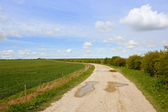 Farm track in springtime Royalty Free Stock Photography