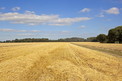 Farm track and stubble field Royalty Free Stock Photos