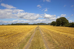 Farm track and stubble fields in summertime Stock Images