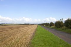 Farm track and wheat stubble Stock Photography