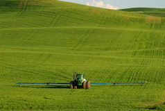 Farm Tractor, Palouse. A Farm tractor, set against the green wheat fields of eastern Washington's Palouse royalty free stock images