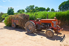 Farm tractor parked. On dirty road in a ranch stock images