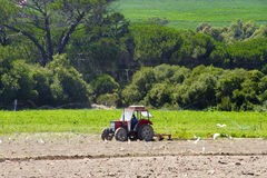 Farm Tractor Plowing Crops Royalty Free Stock Images