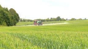 Farm tractor spray summer season green wheat crop field stock video