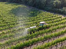 Farm tractor spraying pesticides & insecticides herbicides over green vineyard field. Napa Valley, Napa County, California, USA royalty free stock photos