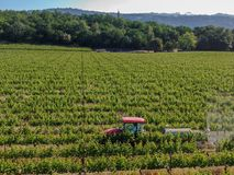 Farm tractor spraying pesticides & insecticides herbicides over green vineyard field. Napa Valley, Napa County, California, USA stock photos
