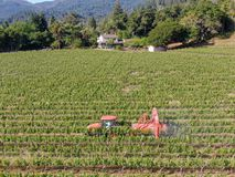 Farm tractor spraying pesticides & insecticides herbicides over green vineyard field. Napa Valley, Napa County, California, USA stock photo