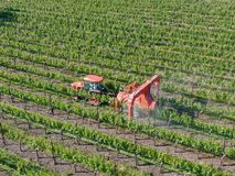 Farm tractor spraying pesticides & insecticides herbicides over green vineyard field. Napa Valley, Napa County, California, USA stock image