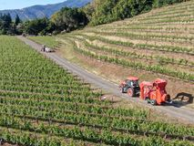 Farm tractor spraying pesticides & insecticides herbicides over green vineyard field. Napa Valley, Napa County, California, USA royalty free stock photo