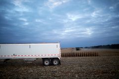 Farm trailer waiting in a field during harvesting. Of the maize crop in evening light on a grey sky day with side vignette Stock Image