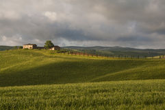Farm in Tuscany,Italy. Farm and green fields in Tuscany,Italy Royalty Free Stock Images