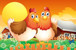 A farm with two hens above the fence Royalty Free Stock Photos