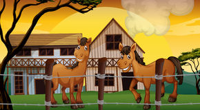 A farm with two horses Royalty Free Stock Photo