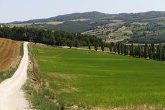 Farm in Umbria Royalty Free Stock Photo