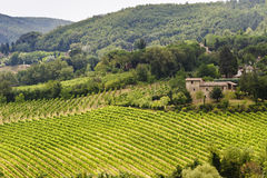 Farm in Val d'Orcia Stock Photo