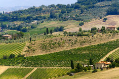 Farm in Val d'Orcia Stock Images