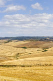 Farm in Val d'Orcia (Tuscany) Stock Photography