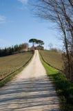 Farm in val of Recanati, Italy Stock Image