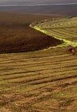 Farm in val of Recanati, Italy Royalty Free Stock Photo
