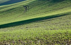 Farm in val of Recanati, Italy Stock Images