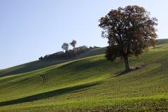 Farm in val of Recanati, Italy Royalty Free Stock Images