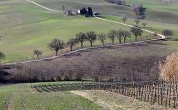 Farm in val of Recanati, Italy Stock Photos