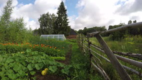 Farm vegetable and medical herbs garden with greenhouse and old fence. Timelapse 4K stock video footage