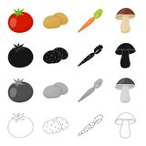 Farm, vegetarian, diet and other web icon in cartoon style.Vitamins, lettuce, vegetableicons in set collection. Stock Photography