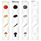 Farm, vegetarian, diet and other web icon in cartoon style.Vitamins, lettuce, vegetableicons in set collection. Stock Photos