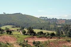 Farm view Stock Photo