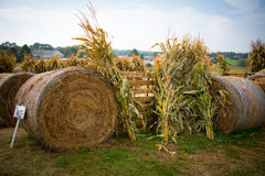 Farm View. Of hay bales and corn stalks Royalty Free Stock Photos