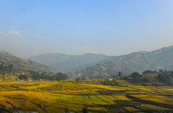 A farm view in nepal with facsinating landscape Royalty Free Stock Images