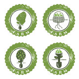Farm vintage grunge vector labels collection Stock Image