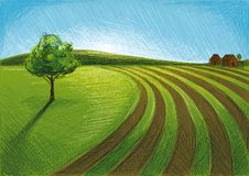 Farm Visiting. Digital painted Landscape with Agriculture, Plants and Farms Stock Image