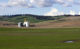 Farm in Washington Palouse Valley. The Palouse Valley of Washington is great place to photograph.  It's full of green hills and contoured farms Stock Photos