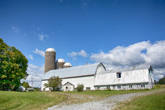 A farm on the way to Thousand Islands Royalty Free Stock Photos