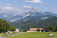 Farm by the weissensee Royalty Free Stock Photography