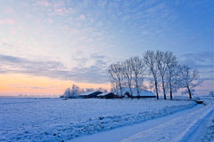 Farm in a white winter landscape Stock Image