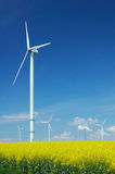 Farm of windturbines close to rape field Royalty Free Stock Image