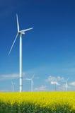 Farm of windturbines close to rape field Royalty Free Stock Image