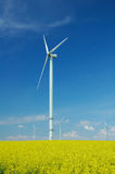 Farm of windturbines close to rape field Stock Photos