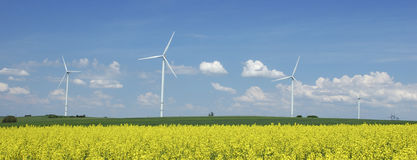 Farm of windturbines close to field Stock Photography